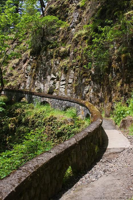 издалека долго течёт река...columbia #2