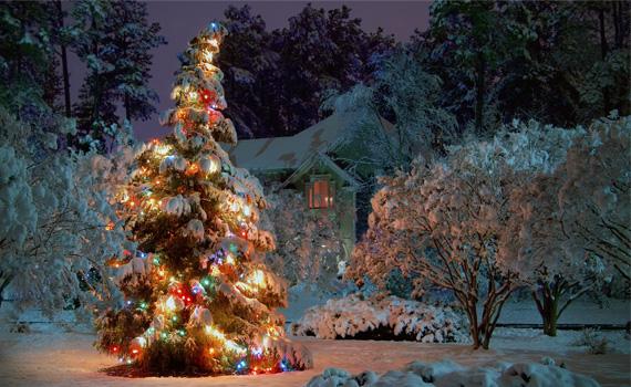 відпочинок на новорічних канікулах