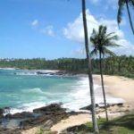 Горящая Шри Ланка 10.12.11 по 28.01.12 3* НВ от 1229$
